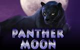 Лунная Пантера в казино Вулкан